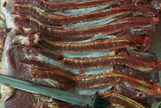 北京肋条肉